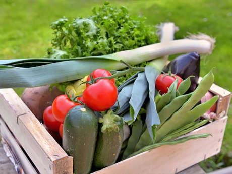 Verdures, légumes bio du Plateau