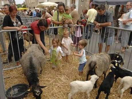 Les Moutonnades de la Saint Barthélémy