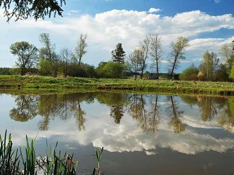 La Brousse Pond