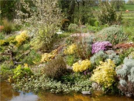 Jardin Les Pieds dans l'Eau à Le Grand Bourg