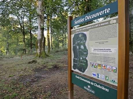 Sentier découverte (massif forestier de Chabrières)