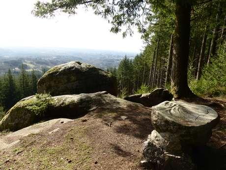 Randonnée - Le Sentier du Puy de la Tourte