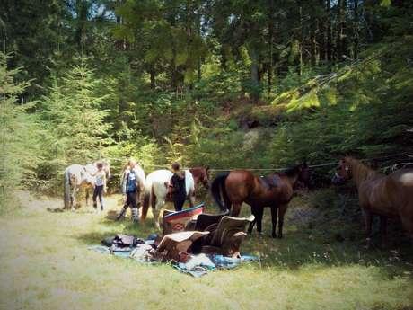 Stage de cheval - 8/12 ans