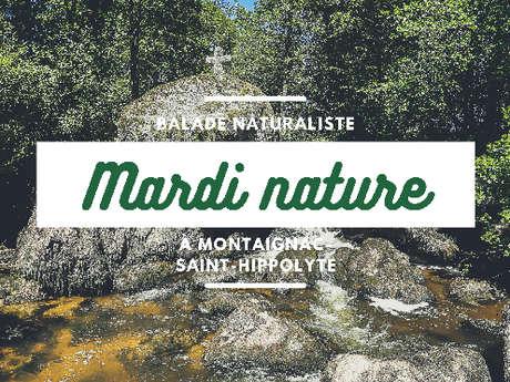 Mardi nature : Les cascades du Doustre à Saint-Hippolyte