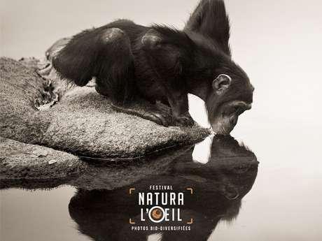 Festival Natura l'œil : Visite guidée des espaces oiseaux et mammifères de l'exposition