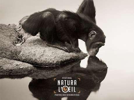 Festival Natura l'œil : Exposition des membres de l'association Egletons Photo Nature