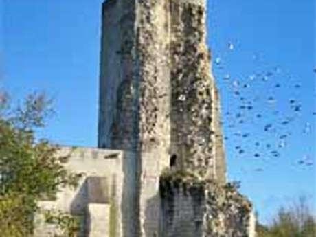 Site castral du Haut Clairvaux