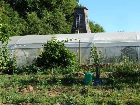 Jardin aux orobanches