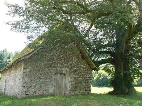 Chapelle du Mas Saint Jean - Saint Sulpice le Dunois
