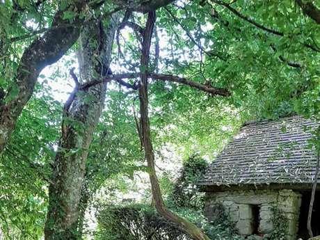 Clos du Préfons Gardens