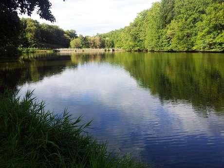 Aire de pique nique au bord de l'étang