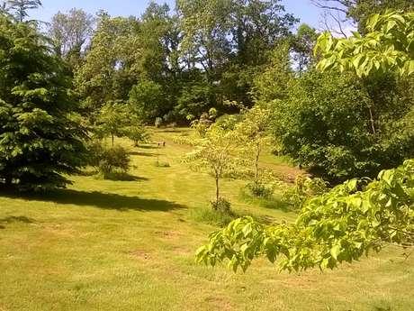 Lys Arboretum