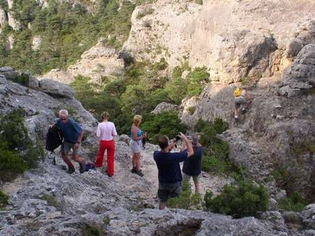 Randonnées Millau - Randonnée pédestre