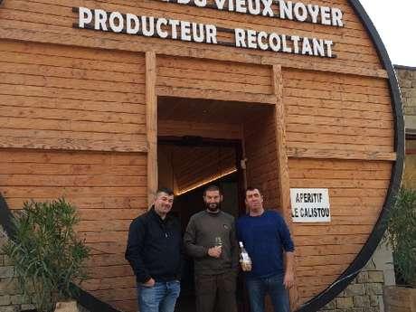 Visite guidée du domaine du Vieux Noyer (côtes de Millau BIO) à Boyne