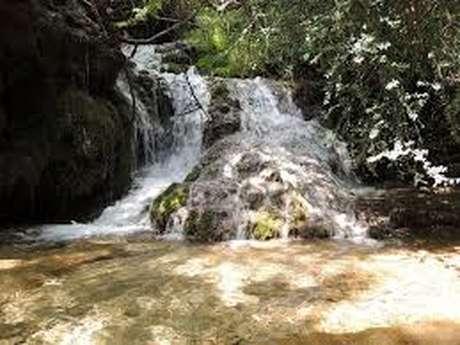 Rando aux cascades de Creissels - (ANNULÉE EN AVRIL)