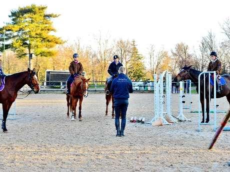 Equitation : Stage de perfectionnement
