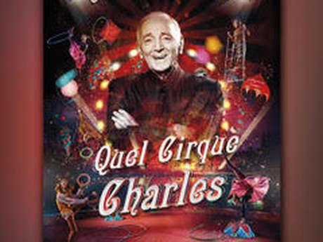 Quel cirque Charles - gala de danse, Le Labo, Sébastien Crochard