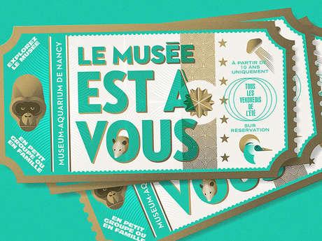 LE MUSEE EST A VOUS - AUTOUR DES GORILLES