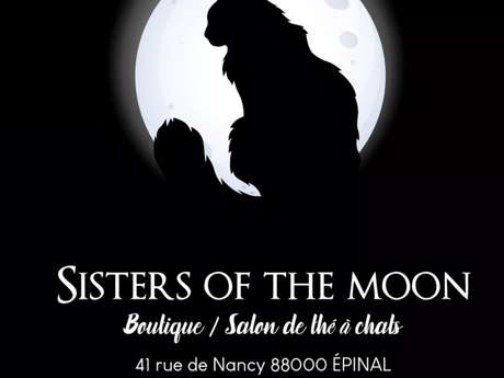 SALON DE THE A CHATS - SISTERS OF THE MOON