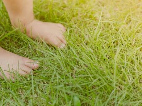 Balade sensorielle pour les tout-petits