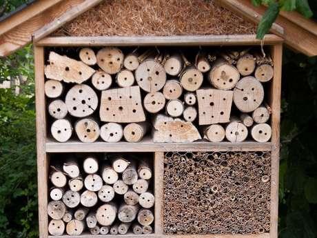 Création d'hôtel à insectes