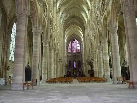 Visite guidée du quartier de la cathédrale
