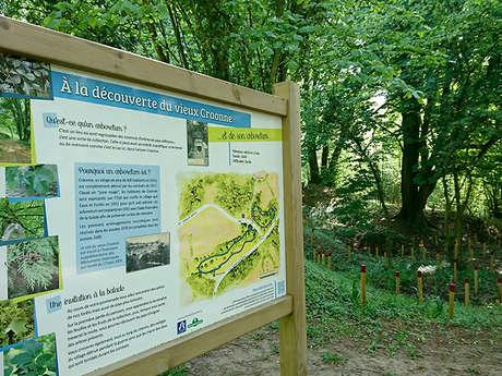 Arboretum et les vestiges du village de Craonne