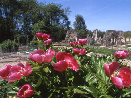 Jardin de plantes médicinales de l'Abbaye de Vauclair