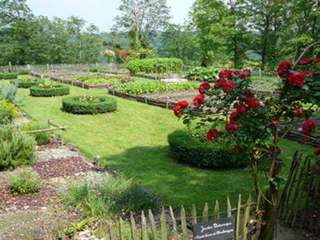 Jardin médiéval des sires de Coucy