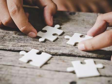 Les passionnés de puzzle