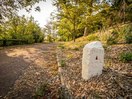 Le Chemin de Ligugé : Saint-Martin