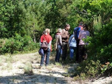 Visite Guidée : Forêt Dunaire de Camicas