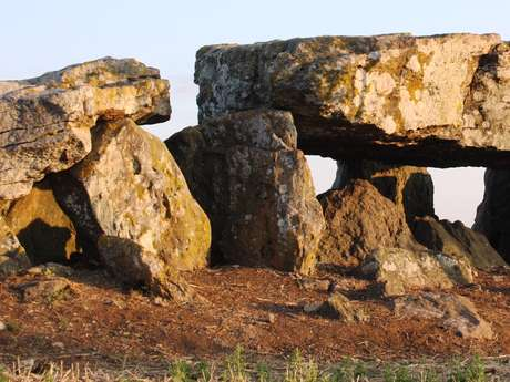 """Exposition """"le dolmen de Chantebrault IV : 4 ans de fouilles !"""