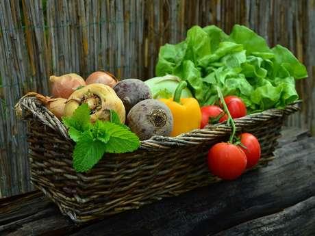 Vente de plants à la ferme, et journée porte ouverte à la ferme de Ty Lulu