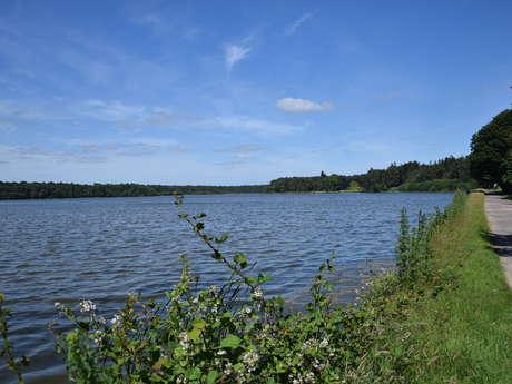 Balade entre deux étangs