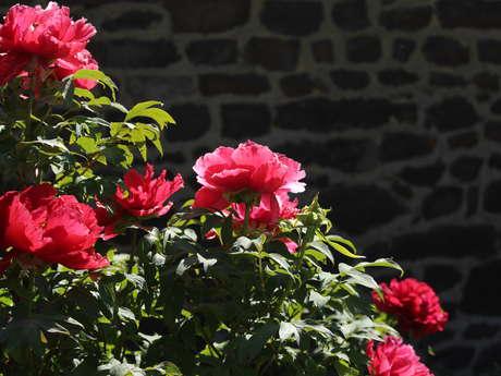 L'arboretum d'Iffendic