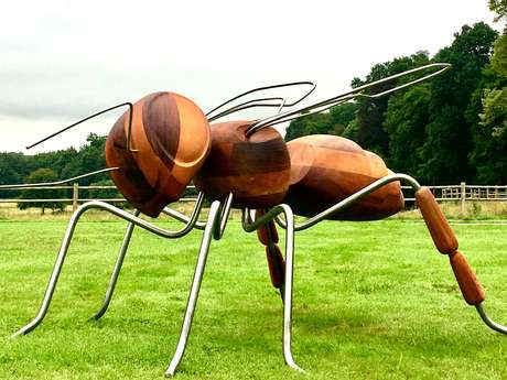 Insect'inside aux Jardins de Brocéliande