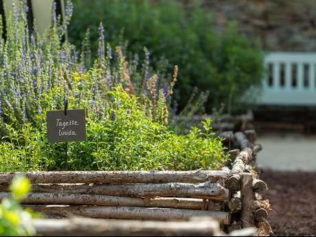 Le jardin médiéval et sa roseraie