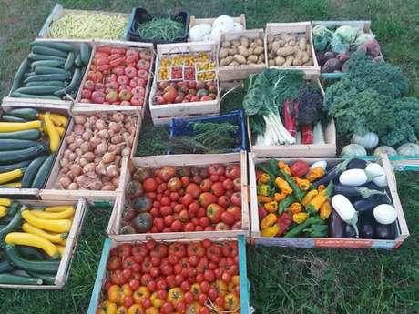 Les Légumes de Pesnel