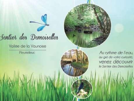 Sentier des Demoiselles - Vallée de la Vaunoise
