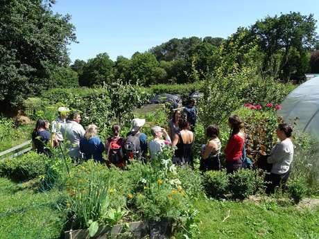 Atelier jardin: Sol vivant au jardin