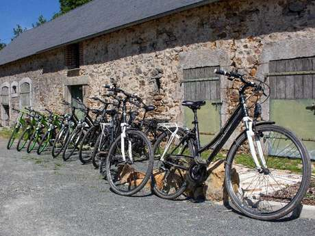 RENTAL AND DELIVERY OF BIKES  AND EQUIPMENT