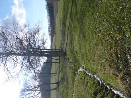 Circuit des Petits Ruisseaux et des Grandes Vignes