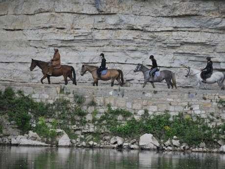 Ferme Equestre Cheval Rando Equitation