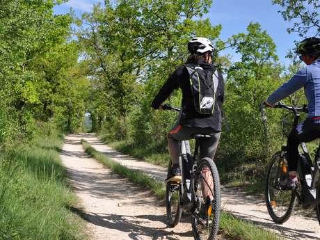 Vélos Verts du Lot