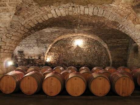 Les Vignobles St-Didier Parnac - Château Saint-Didier/Prieuré de Cénac/Château de Grézels