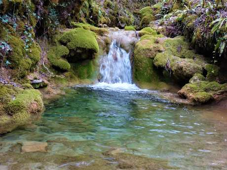 Le Chemin du ruisseau qui se perd