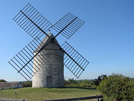 Journées du Patrimoine de Pays et des Moulins: Découverte du Moulin à Vent de Boisse à Sainte-Alauzie