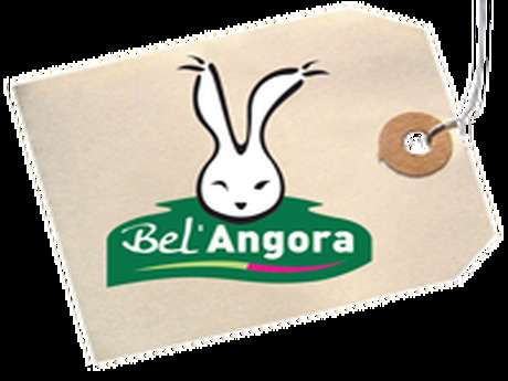 BEL ANGORA