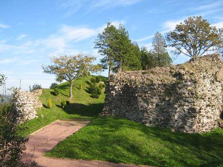 Vestiges du Château Ducal